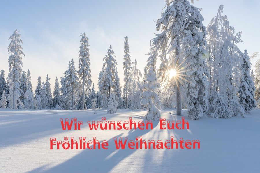 Fröhliche Weihnachten wünscht MeinBioPortal - Winterlandschaft