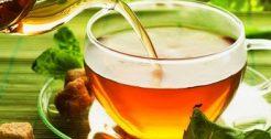 BIO-Teeläden